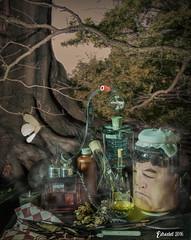 Dr E (EdRocket) Tags: stillife still life stilleven hij lab glass laboratory laboratorium glas 17e eeuws 17th century photoshop selfie selfportrait