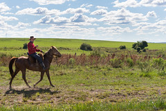 Hellooo!!! (Picardo2009) Tags: tacuarembo uruguay caballo caballos campaa campo cattle country countryside ganado gaucho gauchos horse horses paisano people portrait picoftheday streetphotography