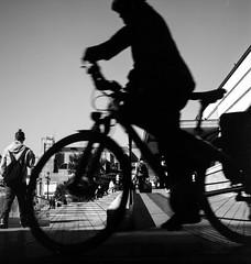 2016♠245 (ruggeroranzani_RR) Tags: analog blackandwhite film 6x6 mediumformat rolleicordiv xenar3575 rolleiretro80s bicycle man silhouette venice filmdev filmdev:recipe=11041 rolleisupergrain