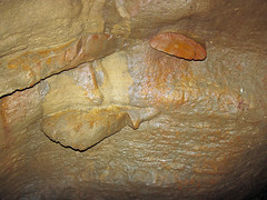Chert nodules in limestone (Columbus Limestone, Middle Devonian; Ohio Caverns, western Ohio, USA) 1 (James St. John) Tags: chert nodule nodules limestone limestones columbus devonian ohio caverns mt tabor west liberty bellefontaine outlier cave caves