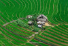 Y9145+47.0615.Sáng Ma Sáo.Bát Xát.Lào Cai. (hoanglongphoto) Tags: asia asian vietnam northvietnam northwestvietnam landscape outdoor scenery vietnamscenery vietnamlandscape vietnamscene house terrace teracedfields transplantingseason sowingseason dale hdr canon canoneos1dx canonef100400mmf28lisusmlens tâybắc làocai bátxát sángmasáo phongcảnh nhà nhữngngôinhà ruộngbậcthang mùacấy đổnước ruộngbậcthangsángmasáo thunglũng