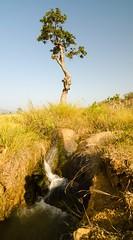 Waterfall Nr Araku (ashok kolluru) Tags: vizag india