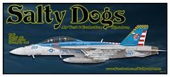 VX-23 223 2016 (maveric043) Tags: vx23 salty dogs super hornet f18 fa18 fa18f 165801