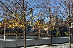 Autumn Colors, Jogger (Four Freedoms Park/NYC) (chedpics) Tags: newyork rooseveltisland eastriver fourfreedomspark