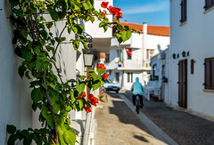 Woman on bicycle on the street of small aegean town (yuliakupeli) Tags: aegean architecture attraction blue bougainvillea buildings cityscape europe flowers green narrow nobody old outdoor plant shrubs sky small sunny town traditional travels village vine walls washed white