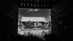 past time... (BillsExplorations) Tags: past old vintage barn abandonedfarm abandonedillinois decay ruraldecay ruraldeterioration farm thanksgiving lost neglect blackandwhite monochrome forgotten