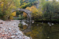 Under the bridge (tonielfuster) Tags: reflejo puente bridge reflexes bosque agua forest water catalunya