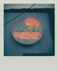 The Angry Goldfish (DavidVonk) Tags: vintage instant analog film polaroid sx70 sonar 119 lens sign neon angrygoldfish desmoines iowa bar pub angry gold fish goldfish