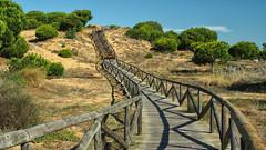 2222  Matalascaas, Almonte, Huelva (Ricard Gabarrs) Tags: camino pasarela parque jardin rural paisaje naturaleza ricardgabarrus olympus ricgaba matalascaas
