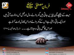 03-12-16) dz group (zaitoon.tv) Tags: mohammad prophet islamic hadees hadith ahadees islam namaz quran nabi zikar