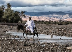 Journey to the Kasbah (Tracy Metz) Tags: donkey man morocco kasbah stream mountains clouds rocks journey travel canon palmtrees kasbahamridil culture northafrica
