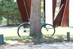 Parque do Ibirapuera (quanaval_sp) Tags: parque ibirapuera sp sãopaulo sampa paisagem landscape alesp assembleialegislativa bicicleta bike