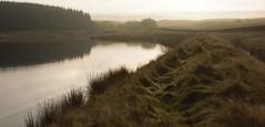 Les quatre saisons dans le Yorkshire (2) (dominiquita52) Tags: yorkshire laneshawbridge autumn reservoir countryside campagne