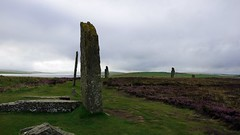 Ring of Brodgar (Gutrem) Tags: a77 alpha77 clouds scenic peace escursione escursioni fotografia viaggi landscape landscapes monument monumenti monuments nature natura nuvole old photography panorama paesaggi paysage reflex sony stone menhir standingstones tourism tourisme turismo travel tour tamron tamron16300 viewpoint verde vento vert wind scozia scotland orcadi orkneys highlands uk historicsites storia heather erica past wonder