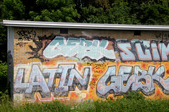 graffiti (wojofoto) Tags: holland graffiti nederland latin netherland trackside wojofoto gebk