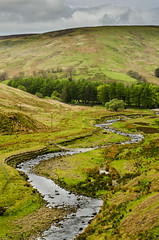 Forest of Bowland (Zill Niazi) Tags: