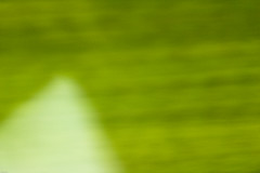 20130719-_DSC7844 (Fomal Haut) Tags: walking nikon 80400mm d4 歩く 散歩写真 sanpocamera