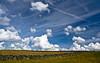 Dry stane dyke. (AlbOst) Tags: clouds perthshire fields walls blueskies drystanedykes dragondaggerphoto drystonedykes