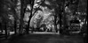 in another world (greg westfall.) Tags: trees france gardens canon french ir path infrared luxembourg chateau fr luxembourggardens abigfave lifepixel 830nm gregwestfall gregwestfallphotography