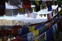 Prayer Flags (karmajigme) Tags: india mountain color montagne flags couleur prayers ladakh drapeaux