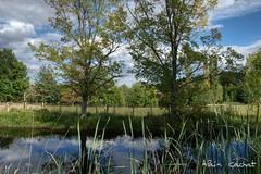 Jaujac #3 (Alain Cachat) Tags: park blue cloud france tree green water grass fence landscape pond nikon eau mare vert bleu barrier nuage paysage arbre parc herbe ardche barrire rhnealpes vivarais d80 jaujac parcnaturelrgionaldesmontsdardche
