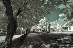 Autumn Prologue (Infrared) (Michael Coyne) Tags: street autumn fall newfoundland ir streetscene infrared postprocessing cornerbrook irphotography
