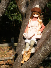 Lofty Perch (Forest_Daughter) Tags: winter vacation doll v mia neemo azone