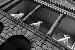 The Brides of Dracula (Strangelove 1981) Tags: ireland bw dublin white black halloween festival dress dracula dresses bramstoker bridesofdracula
