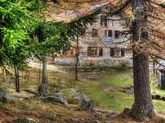 Amprimo2013_PB011021_1 (stegdino) Tags: autumn house tree fall casa cottage hut chalet albero autunno baita gamewinner grangia pregamewinner