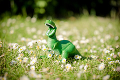 I am Dinosaur, hear my mighty roar! (s0ulsurfing) Tags: flowers summer white blur colour macro green nature beautiful grass june closeup daisies canon fun toy petals weed flora soft dof play angle dinosaur natural bright bokeh pov girly feminine lawn plastic tiny daisy wildflowers delicate rex asteraceae trex bellisperennis englishdaisy 2013 commondaisy s0ulsurfing lawndaisy rex tyrannosaurus summertimeuk