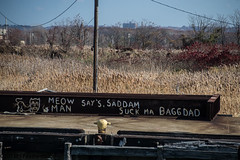 Meow Man message (Phyllis Featherstone) Tags: statenisland nikond3200 meowman workingharborcommittee phyllisfeatherstone