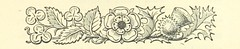 Image taken from page 201 of 'The Death Shot. A romance of forest and prairie, etc'