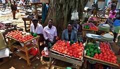 Market women in Lira (Teseum) Tags: africa food potatoes women market lira tomatoes stall onions peppers uganda grocery
