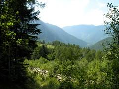 Orsieres - Martigny (12.07.13) 143 (rouilleralain) Tags: valais sembrancher valdentremont stbernardexpress bovernier viafrancigena