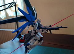 RG Freedom Guandam (ermespittore) Tags: real grade gundam gunpla flickrandroidapp:filter=none freedomguandam