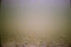 057420110005 (sswartz) Tags: 35mm underwater michigan greatlakes 35mmfilm vivitar underwaterphotography northernmichigan analogfilm