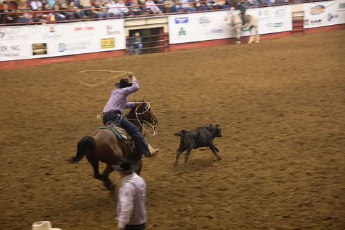 San Angelo Stockshow & Rodeo-9.jpg
