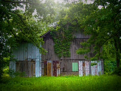 kentucky. (raqcuellar) Tags: green barn rural kentucky ky country oldbarn