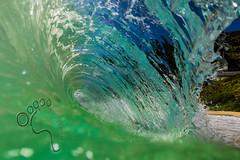 The Green room (MICHAEL A SANTOS) Tags: ocean sunrise hawaii waves oahu eastside whitewash makapuu michaelasantos saintsphotography toesphotos