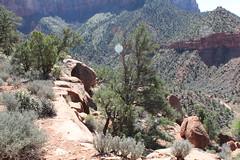 IMG_0609 (em.lincoln7) Tags: nature sarah mom spring getaway zion sue em stgeorge gmc 2014 gpc