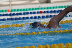 Jonathan Roberts (Aringo) Tags: usa st swimming ut texas north fast peak pack sasa dm fa kms cba aaaa ags 2000s ntn 2014 mtro marrs txla aringo andyringgold