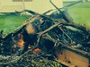Burn Baby Burn (M.Chmilowsky Photography) Tags: wood canada tree grass fire ground manitoba burning mb firepit lorette treeonfire woodonfire mchmilowsky mchmilowskyphotography mchmilowskyphotographer tattooedpiercedphotographer