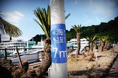 DSC_9874_副本 (Yuchi Wang) Tags: nikon d700 24120mm kagoshima fukuoka kyushu japan kyushutrip sakurajima