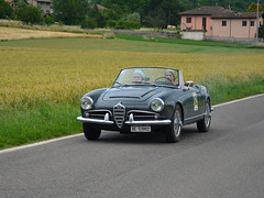 Alfa Romeo Giulia Spider 1600 (Maurizio Boi) Tags: alfaromeo giulia spider car auto voiture automobile coche veicolo old oldtimer classic vintage vecchio antique italy voituresanciennes worldcars