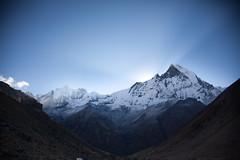 Machhapuchhre (Sitoo) Tags: abc backtombc amanecer annapurna annapurnabasecamp campobaseannapurna himalaya ishtail machapuchare nepal sky trek trekking mountains mountain snow altamontaa montaas sunrise