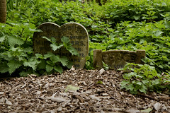 (Josieroo13) Tags: secrettaphophile gravestone graveyard gravemarker grave graves death lifeanddeath beautyindecay serene calm peaceful cemetery abneyparkcemetery magnificent7 londoncemeteries londonsdead london victorian victorianburial burial burials naturealwayswins