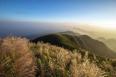 Mt.Wufen, Taiwan _IMG_7893 (Len) Tags: 6d 757m autumn blackcard landscape mountain newtaipeicity rueifang ruifang sky steamfog taipei taiwan wufen wufenshan clouds dawn dawning daybreaking dayspring daybreak daylight fog sunrise                            1635lii ef1635mmf28liiusm