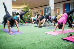 BC Lung Yoga-33 (bdshaler) Tags: bclungassociation bclung takeabreather yoga lululemon