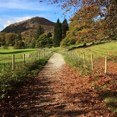 Autumn in Ambleside