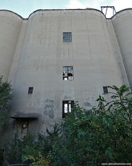 Monolithic shell. more here: http://www.placesthatwere.com/2016/10/abandoned-lehigh-portland-cement.html #abandoned #industrialdecay #abandonedplaces #cement #rustbelt #oglesby #illinois #factory #monolith #brokenwindows #overgrown #nature #weeds #portlan (placesthatwere) Tags: abandoned urbanexploration ghosttowns urbex rurex abandonedplaces forgottenplaces urbandecay decay beautifuldecay